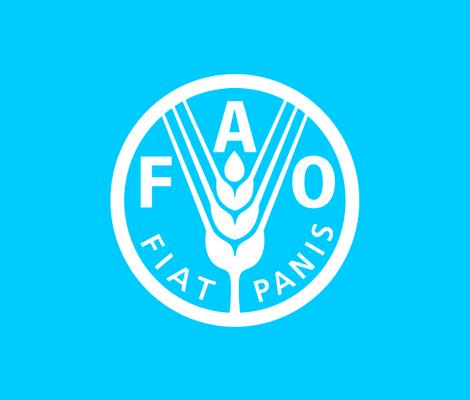 FAO SDG courses